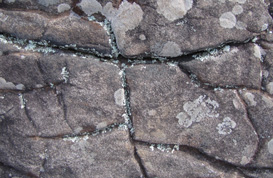 Cracked Stone Textures