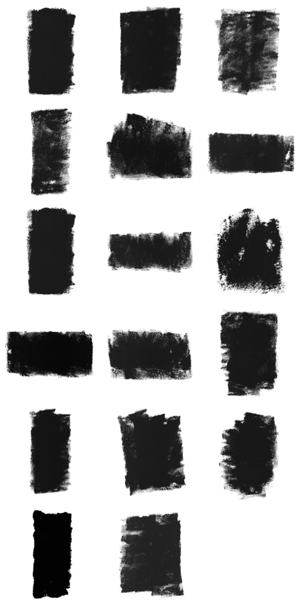 Rolled Paint Photoshop Brushes and Vectors