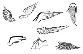 Wings Vectors and Brushes